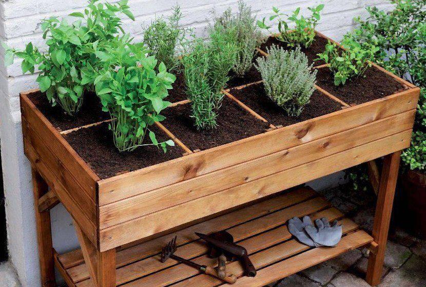 Cultivar-Horta-em-Apartamento-17